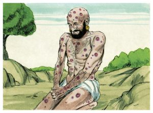 Job illustration #6